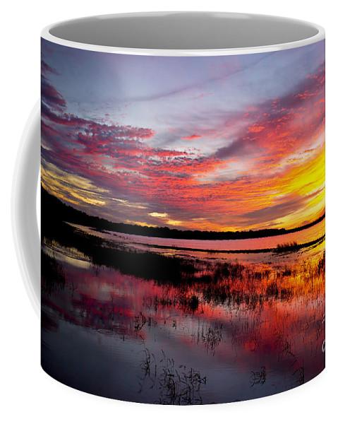 Photographs Coffee Mug featuring the photograph Sunset At Myakka River State Park, Florida by Felix Lai