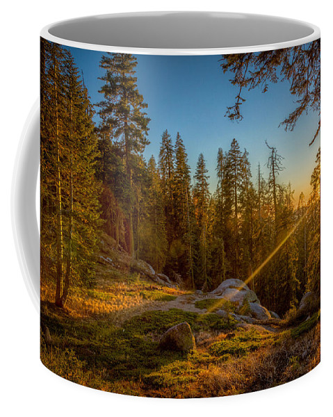 Natural Forms Coffee Mug featuring the photograph Sunset At Sequoia by Rikk Flohr