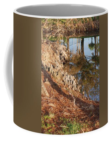 Reflections Coffee Mug featuring the photograph Sunset By The Water by Rob Hans