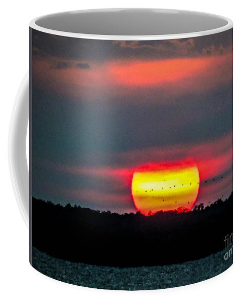 Palm Coffee Mug featuring the photograph Sunset Flight by Marilee Noland
