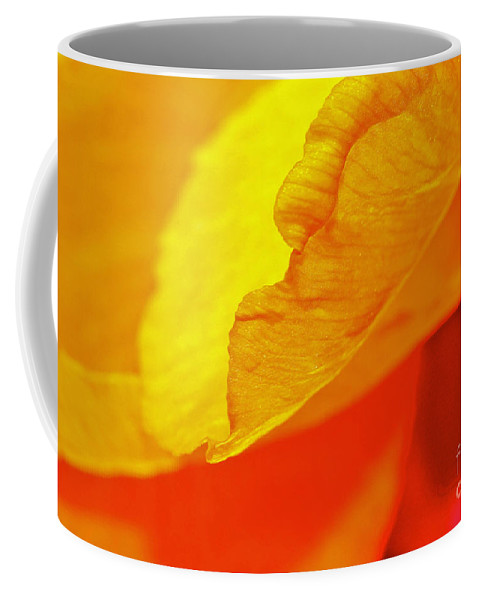 Flower Coffee Mug featuring the photograph Sunset Flower by Michael Cinnamond