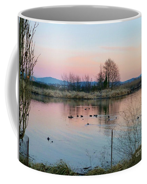 Sunset Coffee Mug featuring the photograph Sunset In Union Bay by As the Dinosaur Flies Photography