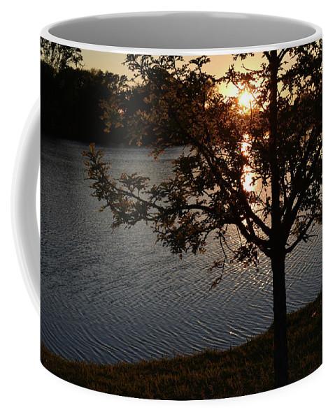 Coffee Mug featuring the photograph Sunset Lake by Josiane Smith