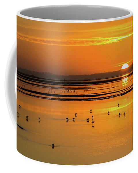 Sunsets Coffee Mug featuring the photograph Sunset Over Arcata Marsh, With Avocets by Beth Partin