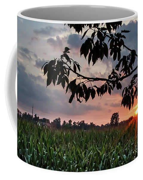Orange Coffee Mug featuring the photograph Sunset Over The Plains by Edward Moorhead