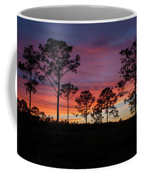 Sunset Pines Coffee Mug featuring the photograph Sunset Pines by Paul Rebmann