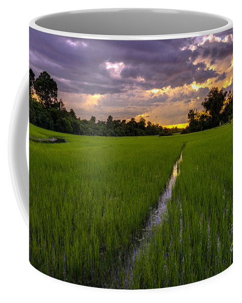 Sunrise Coffee Mug featuring the photograph Sunset Rice Fields In Cambodia by Mike Reid