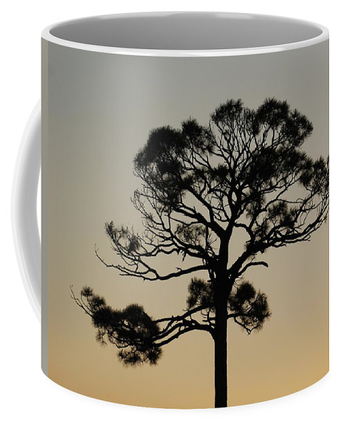 Tree Coffee Mug featuring the photograph Sunset Tree by Rob Hans