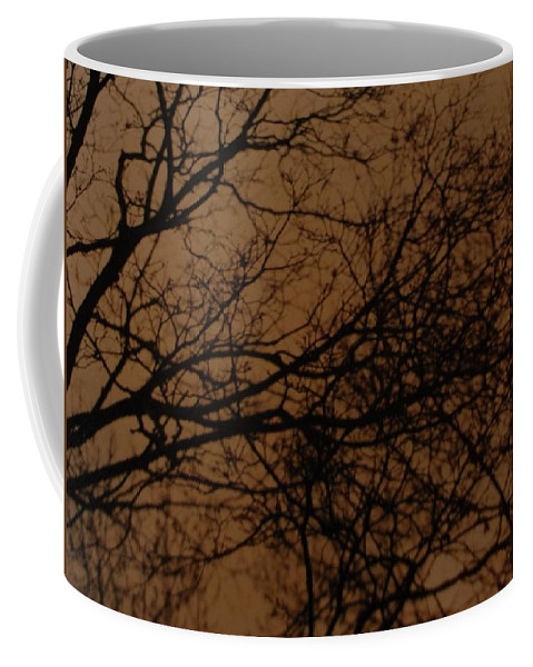 Landscape Coffee Mug featuring the photograph Sunset Winter by Rob Hans