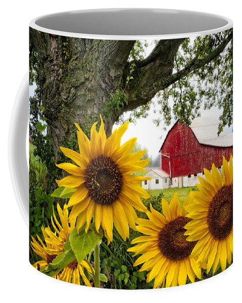 Appalachia Coffee Mug featuring the photograph Sunshine In The Fog by Debra and Dave Vanderlaan