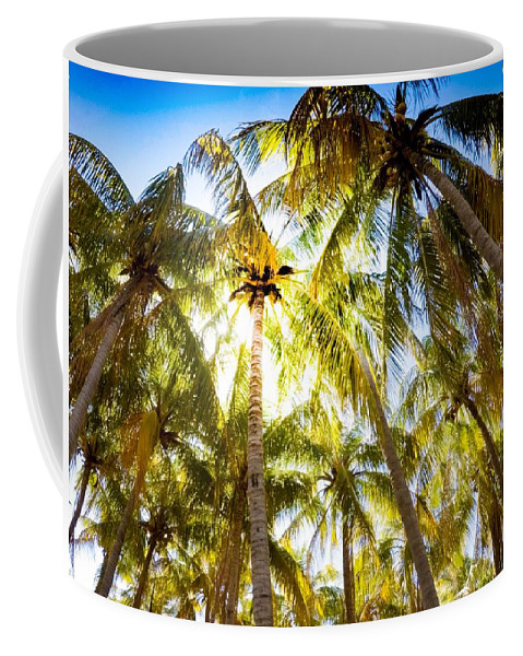 Palm Coffee Mug featuring the photograph Sunshine Palms by Ethan Helferty