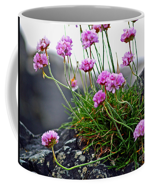 Fine Art Photography Coffee Mug featuring the photograph Survival Of The Fittest by Patricia Griffin Brett