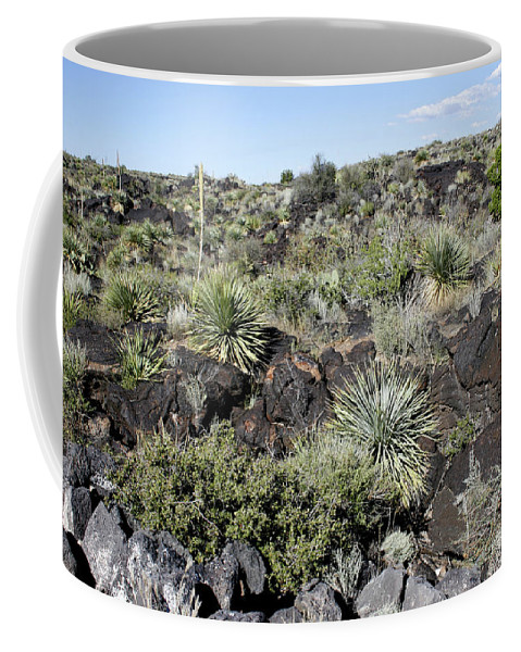 New Mexico Coffee Mug featuring the photograph Sw01 Southwest by James D Waller