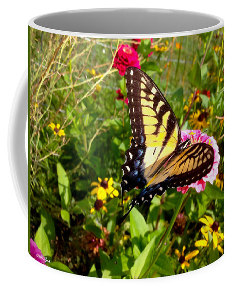 Swallowtail Coffee Mug featuring the photograph Swallow Tail Butterfly Enjoying The Sunshine by Debra Lynch