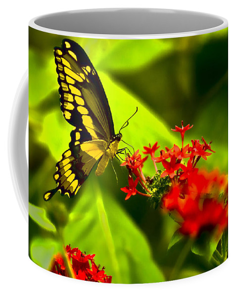 Insect Coffee Mug featuring the photograph Swallow Tail by Ches Black