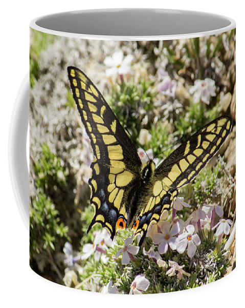 Colorado Coffee Mug featuring the photograph Swallowtail At Sand Wash by Debbie Rudd