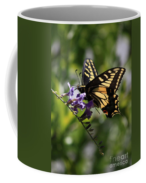 Swallowtail Butterfly Coffee Mug featuring the photograph Swallowtail Butterfly 1 by Carol Groenen