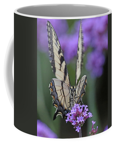 Nature Coffee Mug featuring the photograph Swallowtail Staredown by Mike Dickie