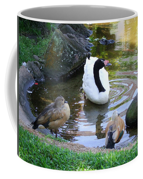 Birds Coffee Mug featuring the photograph Swan And Wood Ducks by Mary Deal