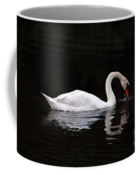 Clay Coffee Mug featuring the photograph Swan Drinking by Clayton Bruster