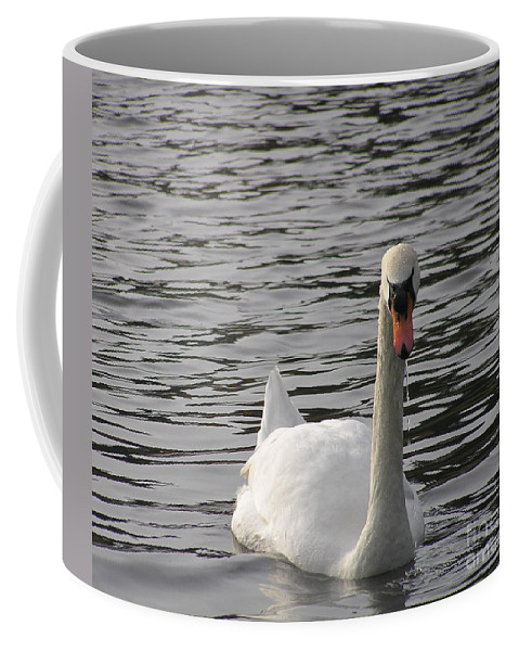 Swan Coffee Mug featuring the photograph Swan by Louise Magno