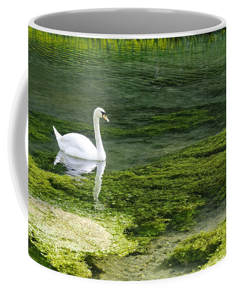 Lathkill Dale Coffee Mug featuring the photograph Swan On The River Lathkill by Rod Johnson