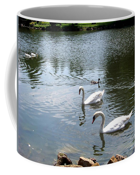 Swans Coffee Mug featuring the photograph Swans And Ducks by Charles Robinson