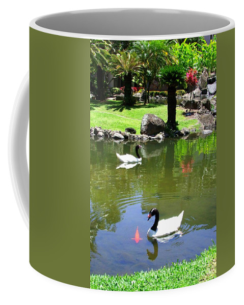Swan Coffee Mug featuring the photograph Swans And Gold Fish by Mary Deal