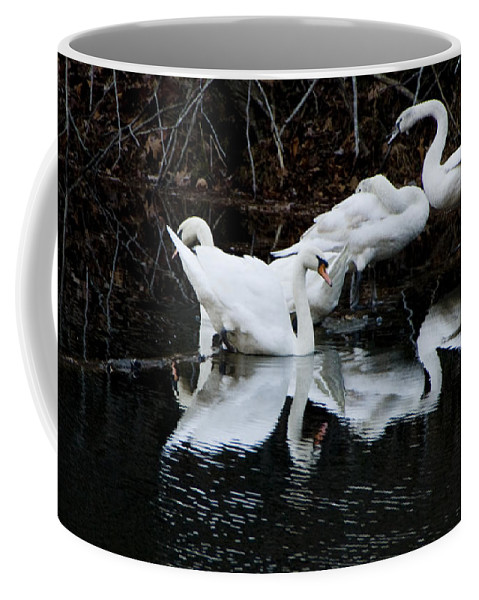 Birds Coffee Mug featuring the photograph Swans And Snow Geese by Ches Black