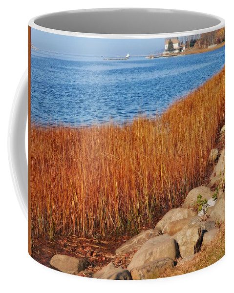Seascape Coffee Mug featuring the photograph Swath Of Gold In Centerport, New York by Cheryl Kurman