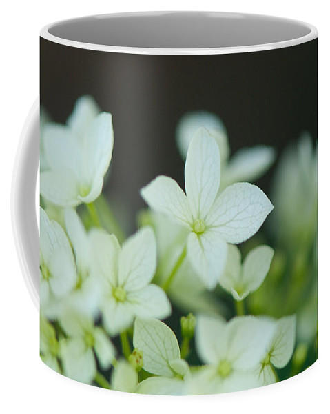 Sweet Coffee Mug featuring the photograph Sweet Hydrangea by Lisa Knechtel