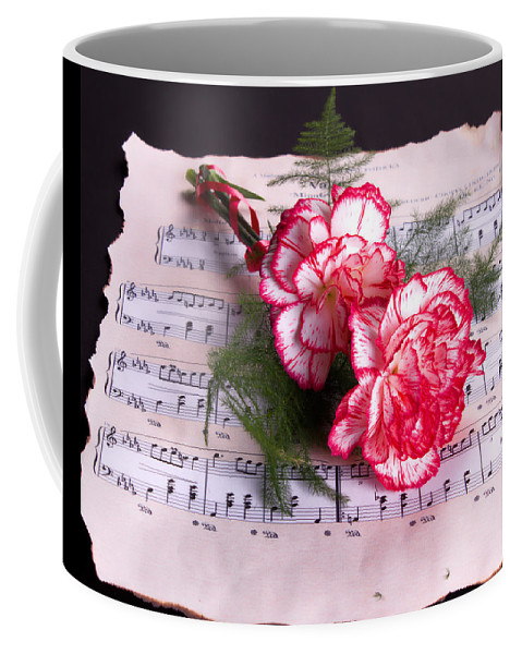 Music Coffee Mug featuring the photograph Sweet Music by TN Fairey