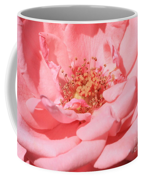 Roses Coffee Mug featuring the photograph Sweet Pink Rose by Carol Groenen