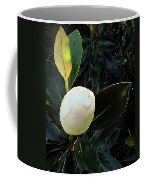 Nature Coffee Mug featuring the photograph Sweet Promise by Peg Urban