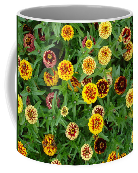 Flowers Coffee Mug featuring the photograph Sweeties by Susan Baker