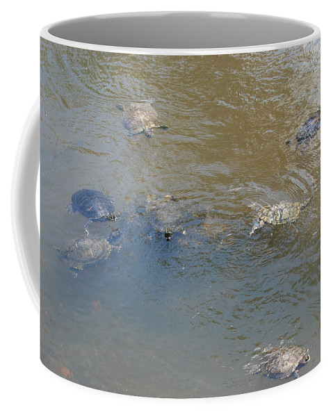 Water Coffee Mug featuring the photograph Swimming Turtles by Rob Hans