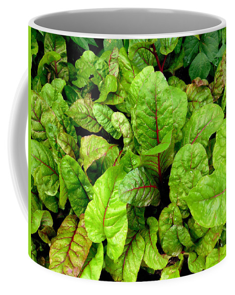 Silver Beet Coffee Mug featuring the painting Swiss Chard In A Vegetable Garden 4 by Jeelan Clark