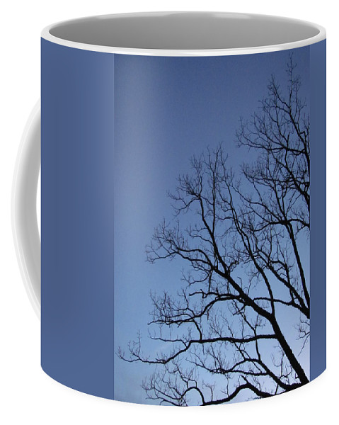 Winter Blue Sky Tree Silhouette Photograph Skyscape Canvas Prints Contrast Sycamore Silhouette Arbor Sky Clear Sky Clear Day Coffee Mug featuring the photograph Sycamore Silhouette by Joshua Bales