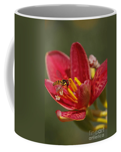 Flower Coffee Mug featuring the photograph Table For One by Deborah Benoit