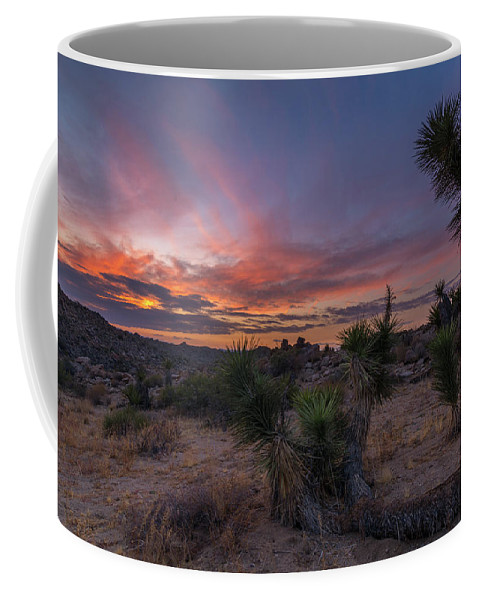 Joshua Tree National Park Landscapes Fineart Sunset After Sunset Sunlight Bluehour Coffee Mug featuring the photograph Take A Rest by Somaly Chhoeung