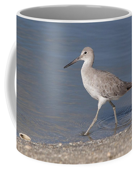Wildlife Coffee Mug featuring the photograph Taking A Stroll by Kenneth Albin