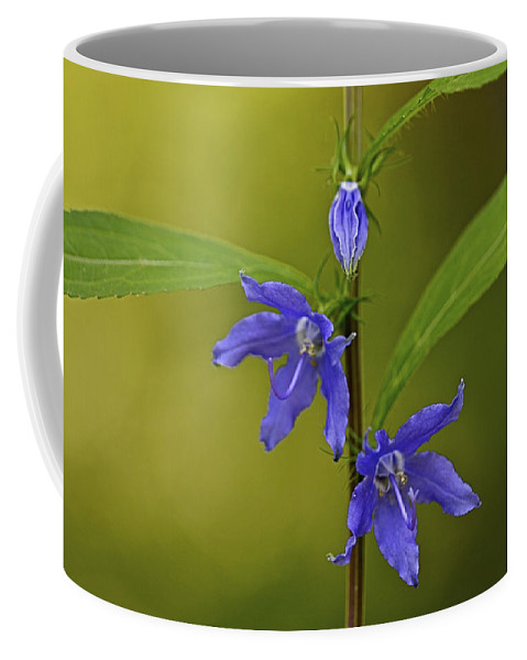Abstract Coffee Mug featuring the photograph Tall Bellflower by Jack R Perry