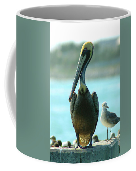 Pelican Coffee Mug featuring the photograph Tall Pelican by Susanne Van Hulst