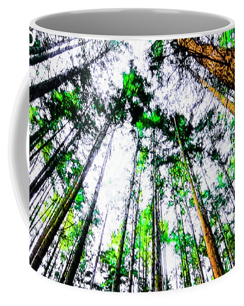 Tall Trees To The Sky Coffee Mug featuring the photograph Tall Trees To The Sky by Akin Samuel