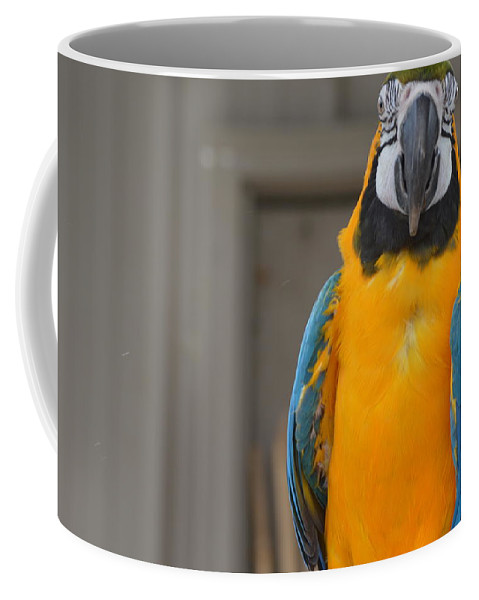 Animal Coffee Mug featuring the photograph Tanganyika 0088 by James Conklin
