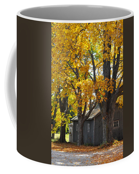 Autumn Coffee Mug featuring the photograph Tar Paper Shack by Tim Nyberg