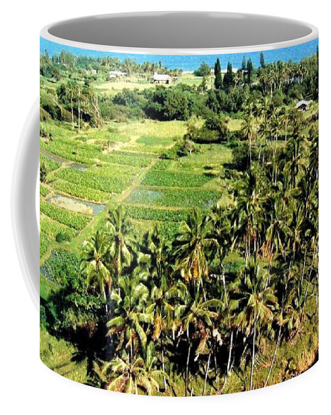 1986 Coffee Mug featuring the photograph Taro Fields by Will Borden