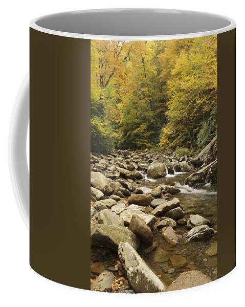 Autumn Coffee Mug featuring the photograph Tennessee Autumn Stream 6059 by Michael Peychich