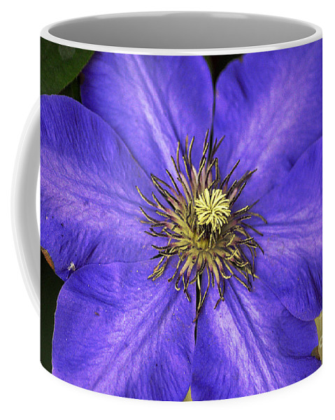 Clay Coffee Mug featuring the photograph Tenticles by Clayton Bruster