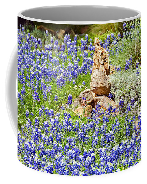 Bluebonnets Coffee Mug featuring the photograph Texas Bluebonnets by Greg Reed